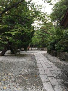 鎌倉高徳院01